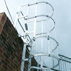 Vertical Access Ladders